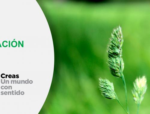 Fundación Creas, nuestro socio en Aragón