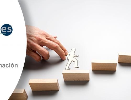Solicitud de oferta personal técnico de formación y mentoring